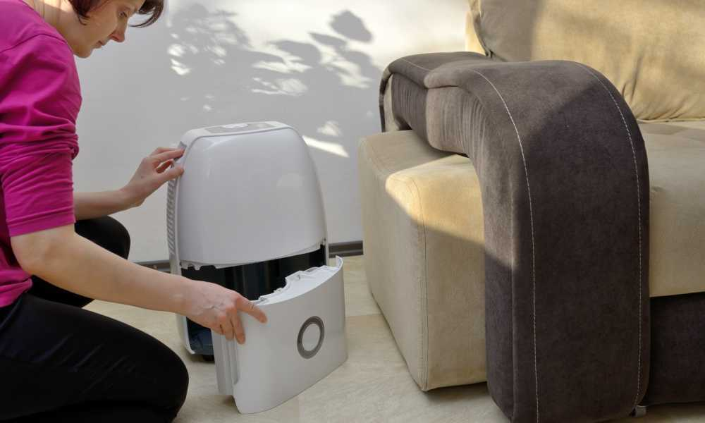 Most Energy-efficient Dehumidifier