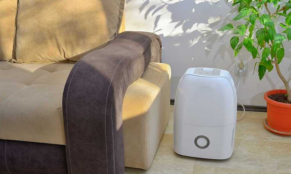 Top Rated Dehumidifiers