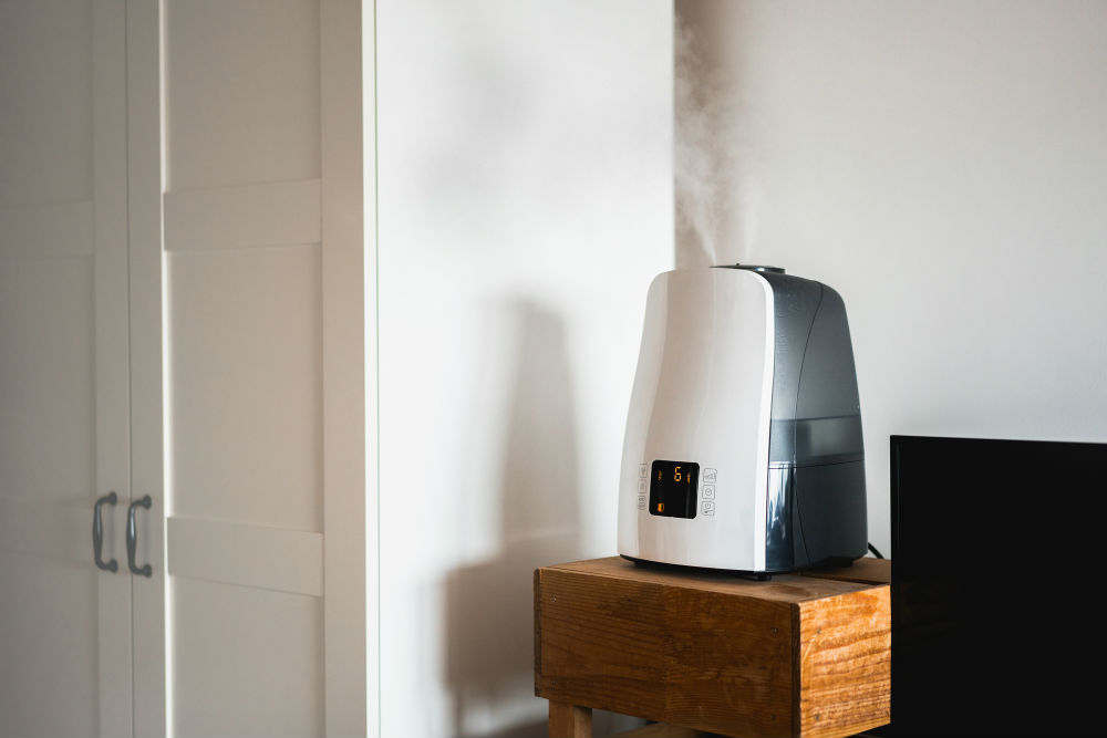 Humidifier Buying Guide