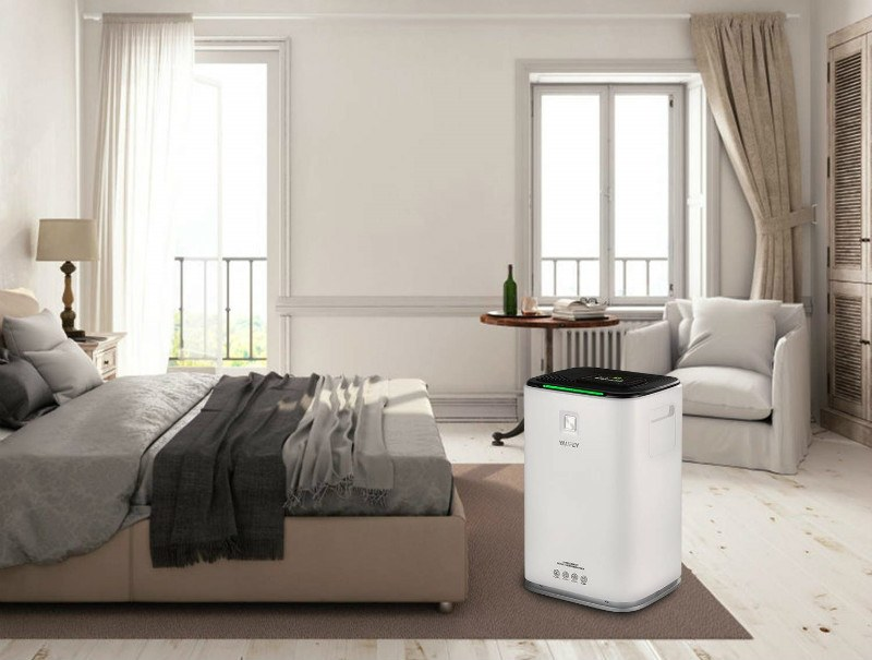 Dehumidifier vs Air Purifier
