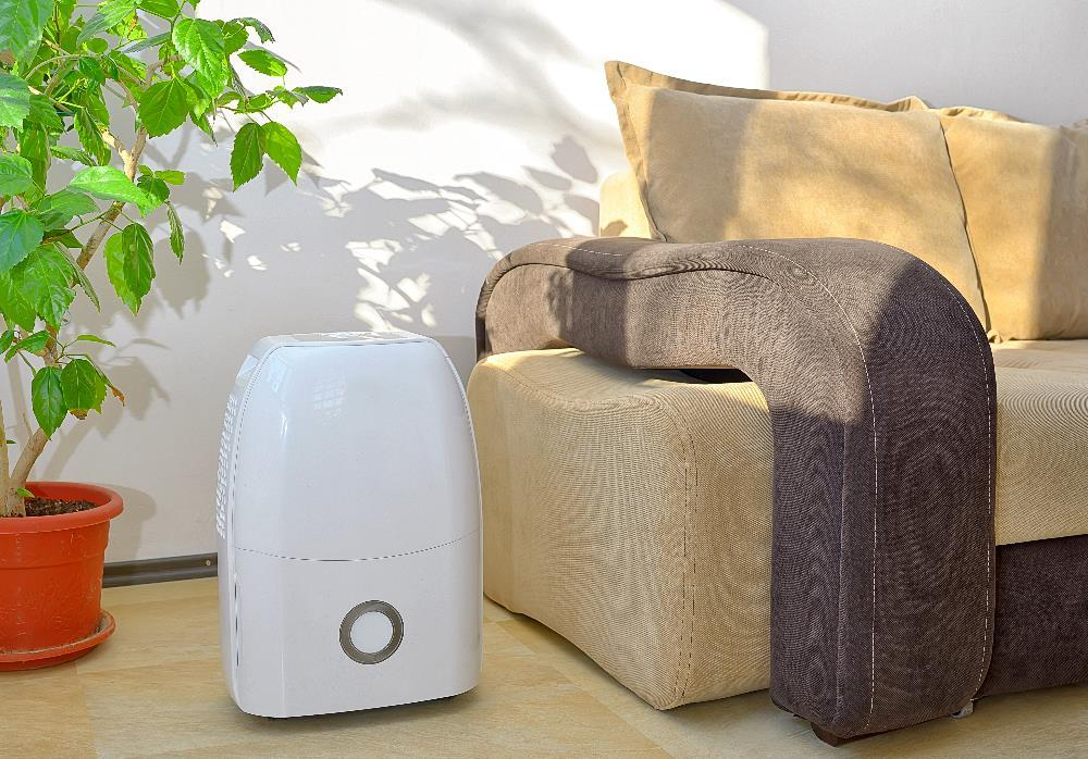 Best Dehumidifier Brands
